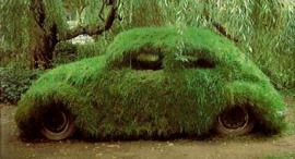 You said you wanted a green car...